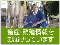 畜産・繁殖情報をお届けしています